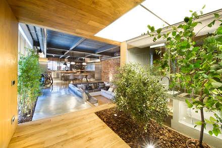 Bajo comercial convertido en loft (Terrassa): Jardines de invierno de estilo rústico de Egue y Seta