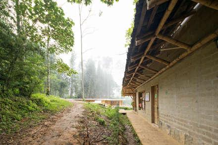 Montessori_Image 2:  Schools by Komoni.Arquitectos