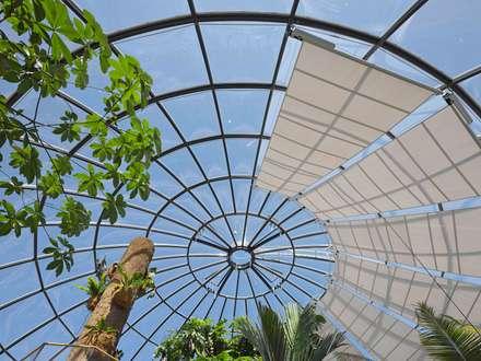 Botanischer Garten, Zürich: tropischer Garten von HPP Architekten GmbH