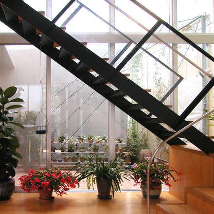 花壇の家: ユミラ建築設計室が手掛けた玄関/廊下/階段です。