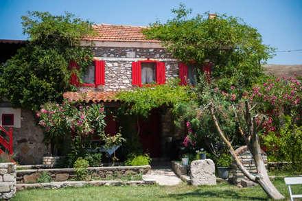 ARAL TATİLÇİFTLİĞİ - Genel Görünüm: kırsal tarz tarz Evler