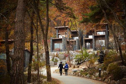 Jecheon Resom Forest: 나우동인건축사사무소의  레스토랑