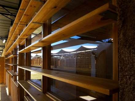 """""""LA TERRA DEI BAMBINI"""": Scuole in stile  di ARCò Architettura & Cooperazione"""