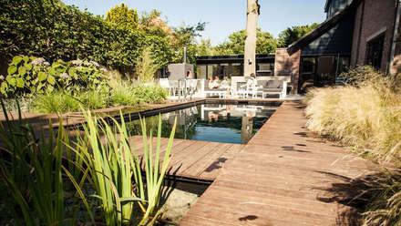 Een villatuin voor levensgenieters: modern Zwembad door Studio REDD exclusieve tuinen