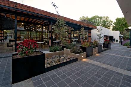 Jardinera de Día: industrial Garden by Forma Taller
