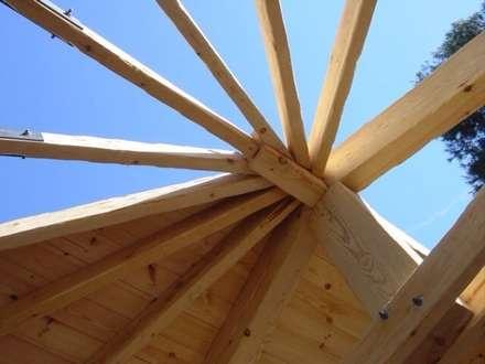 Proyectos y Mobiliario : Jardines de invierno de estilo moderno de DEKMAK interiores