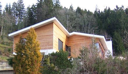 Villa AG11:  Villa von Firmhofer + Günther Architekten
