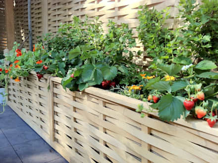 raised beds border edging minimalistic garden by quercus uk ltd - Garden Design Uk