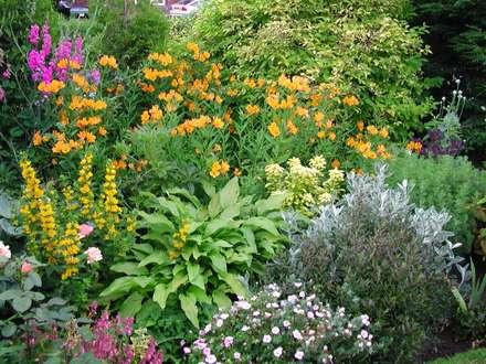 rustic Garden by Anne Macfie Garden Design