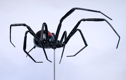 Red Back Spider:  Museums by Neil Wilkin Bespoke chandeliers & Glass Sculpture