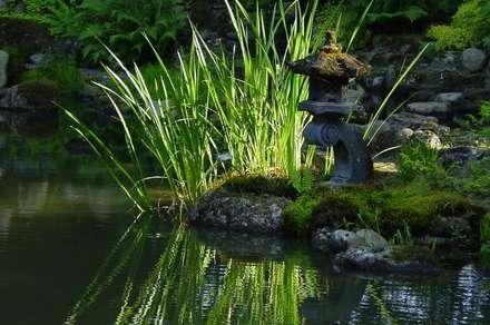 สวน by japan-garten-kultur