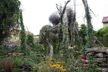 Spätsommer: tropischer Garten von Gartenarchitekturbüro Timm