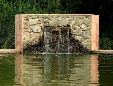 Garden Pond by Jordi Alsina s.l
