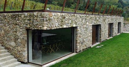 Bodegas de vino de estilo rural por GRISDAINESE
