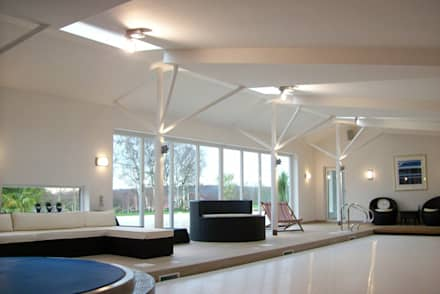 'Lofties' Nottinghamshire: minimalistic Pool by Rayner Davies Architects