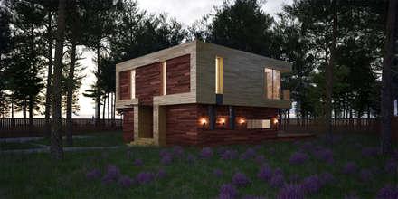 scandinavian Houses by  Aleksandr Zhydkov Architect