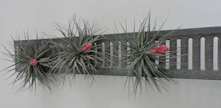 Dïst Airplant Zink: industriële Serre door Dïst Dutch Design