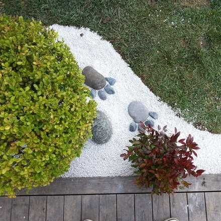 abelia peyzaj - mayavera4: modern tarz Bahçe