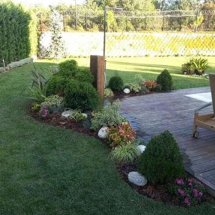 abelia peyzaj – mayavera7: modern tarz Bahçe