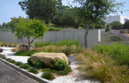 Grupo Yorga - AV 62: Jardines de estilo mediterráneo de Estudio de paisajismo 2R PAISAJE
