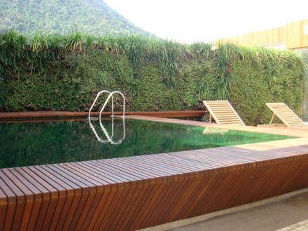 Projetos Diversos: Jardins minimalistas por Quadro Vivo Urban Garden Roof & Vertical
