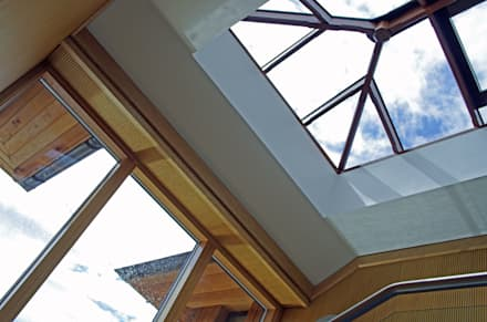 Glazed screen and rooflight:  Schools by Elbourn Architects