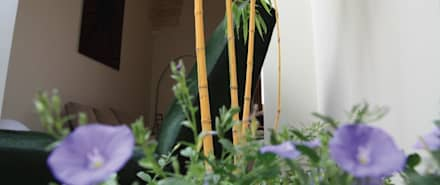 Giardino d'interno: Giardino d'inverno in stile in stile Tropicale di otragiardini