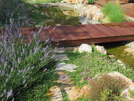 Puente de madera tropical: Jardines de estilo mediterráneo de LANDSHAFT