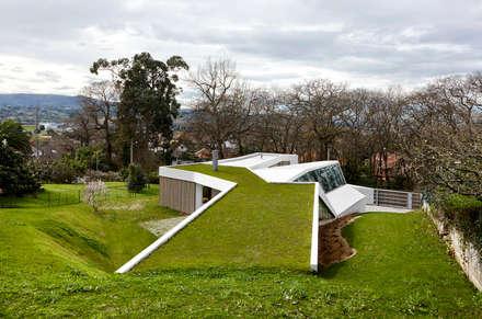 LARA RIOS HOUSE: Cubierta Verde: Casas de estilo industrial de miba architects