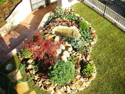 Realizzazioni giardini: Giardino in stile in stile Classico di Azienda agricola Vivai Romeo