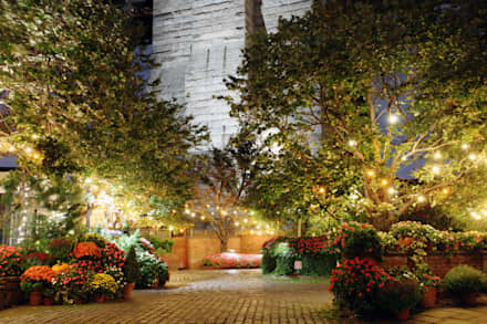 Giardino tropicale: Giardino in stile in stile Tropicale di italiagiardini
