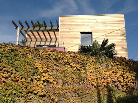 La maison dans la végétation dromoise: Maisons de style de style Moderne par HELENE LAMBOLEY ARCHITECTE DPLG