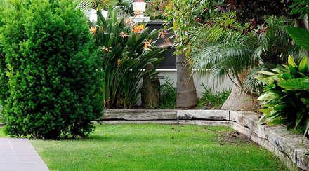 Jardines tropicales ideas im genes y decoraci n homify - Diseno de jardines exteriores para espacios pequenos ...
