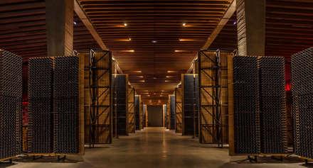 La carpintería técnica de Bodegas Portia: Bodegas de estilo minimalista de SPIGOGROUP