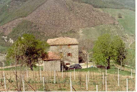 Casa rurale idee ispirazioni homify for Casa colonica coloniale