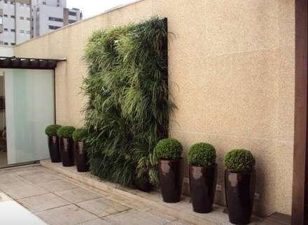 Manutenção de paisagismo e jardim vertical.: Jardins modernos por Amaria Gonçalves  - home & garden