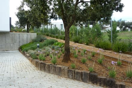 ARQUITECTURA CONTEMPORÁNEA - JARDÍN NATURALIZADO: Jardines de estilo mediterráneo de Ángel Méndez, Arquitectura y Paisajismo