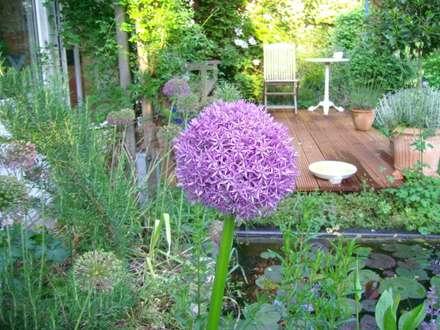 Quadratischer Gartenteich an Holzdeck: ausgefallener Garten von Tina Brodkorb Landschaftsarchitektur