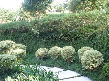 Requinte: Jardins clássicos por Loro Arquitetura e Paisagismo
