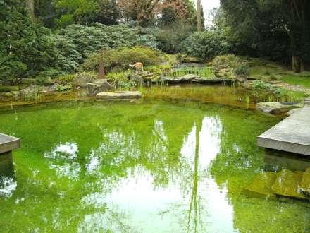 asian Garden by Architektura krajobrazu- naturalne systemy uzdatniania wod