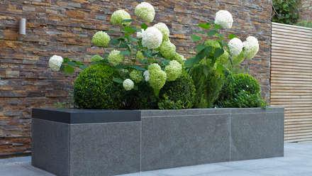 Luxus Gestaltung : moderner Garten von Paul Marie Creation