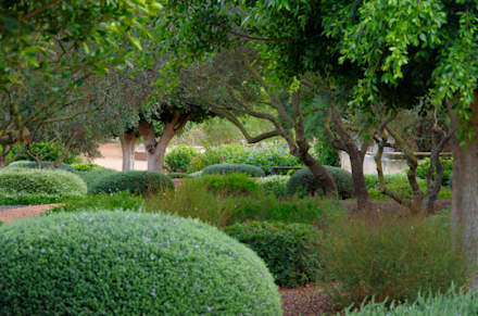 Jardines Mediterráneos: Jardines de estilo mediterráneo de Viveros Pou Nou