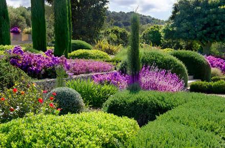 jardines jardines de estilo mediterrneo de viveros pou nou
