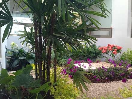 Casa Z-26. Jardín interior con celosía metálica.: Jardines de estilo moderno por EcoEntorno Paisajismo Urbano