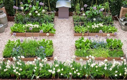​London Kitchen Garden - Small Garden Design by LS+L : rustic Garden by LS+L