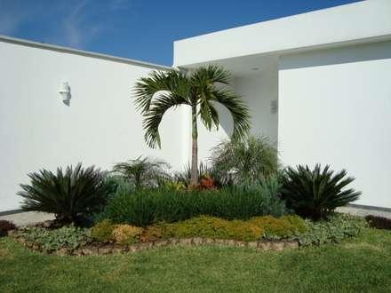 Jardines de estilo topical por Vivero Sofia