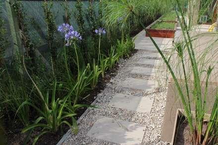 caminos entre verde: Jardines de estilo moderno por BAIRES GREEN