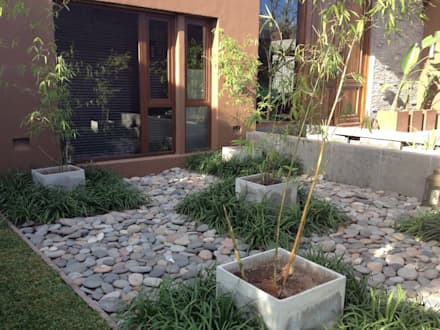 juego de plantas en damero: Jardines de estilo asiático por BAIRES GREEN