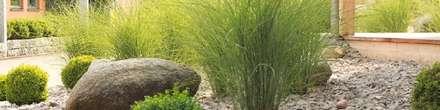 Environnement Feng Shui: Jardin de style de style Asiatique par DEVELOPPEMENT FENG SHUI