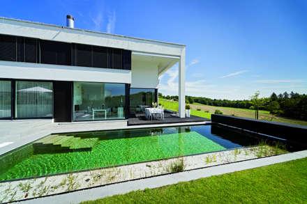 Balena Pools:  Infinity pool von Balena GmbH
